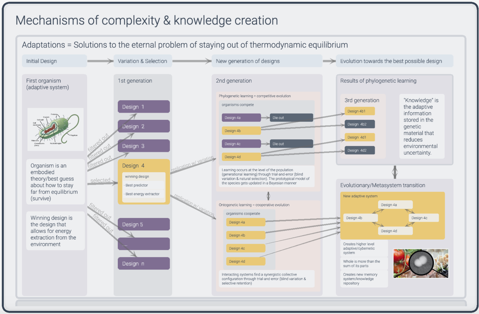 Mechanisms of Knowledge Creation_Infinity Maps